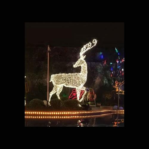 3D Deer Pose 1 – H 2M – Outdoor Large Display Lights 200CM.